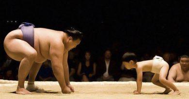 big-sumo-vs-small-sumo
